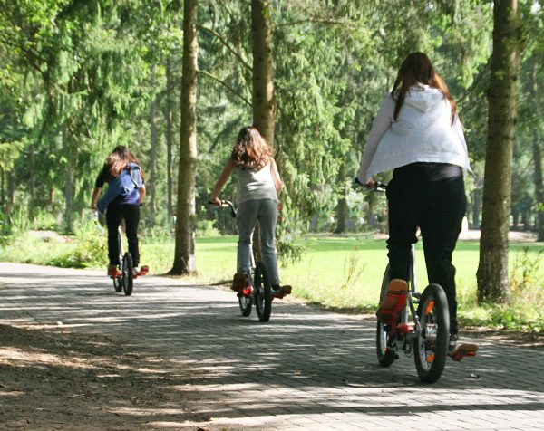 Bikesteppen